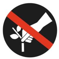 Non raccogliere fiori